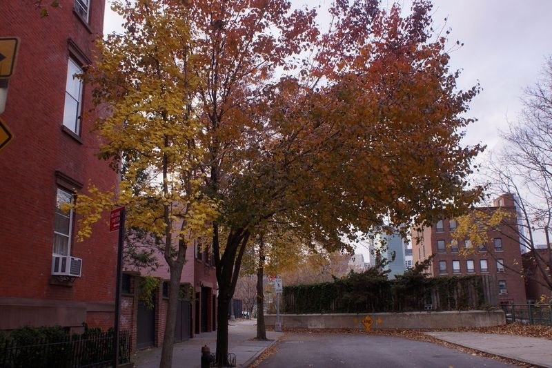 7 middagh street, brooklyn heights