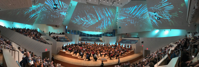 New World Symphony 2018 - 9